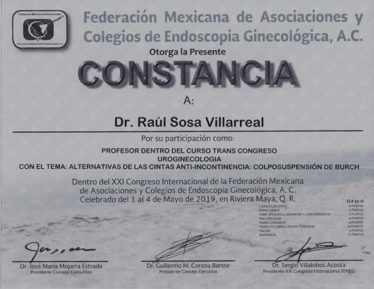 Raul Sosa Villarreal - Multimedia
