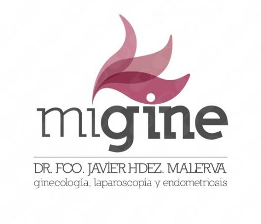 Francisco Javier Hernández Malerva - Galería de imágenes