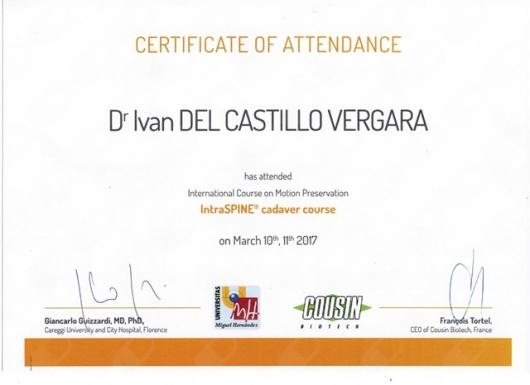 Ivan Del Castillo Vergara - Galería de imágenes