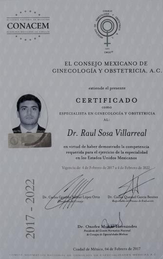 Raul Sosa Villarreal - Galería de imágenes