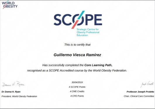 Guillermo Viesca Ramírez  - Multimedia