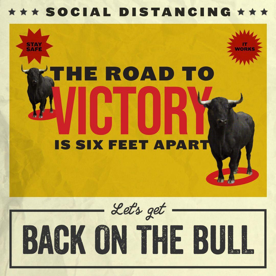Back on the Bull
