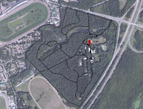 1222 Yaddo Site Analysis1
