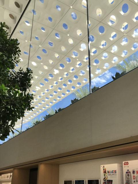 1600 Apple Scottsdale Interior Sized 3