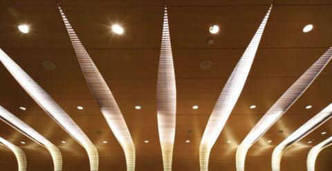 9809 Bard Ceiling