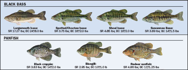 Freshwater Fish Identification