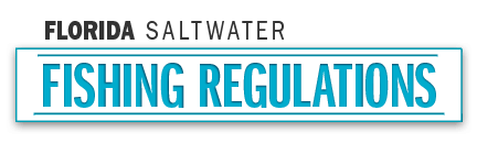 Florida saltwater fishing regulations 2018 eregulations for Florida state fishing license