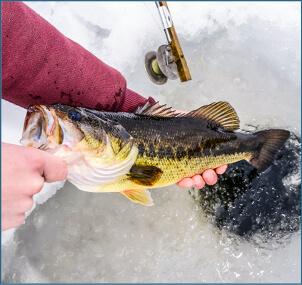 ice_fishing_lmbass_bill_byrne_1570