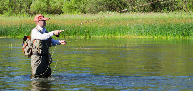 Statewide angling regulations new york fishing for Washington fishing license cost 2017