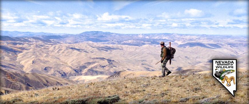 Nevada big game hunting seasons applications 2017 for Wa fishing license cost