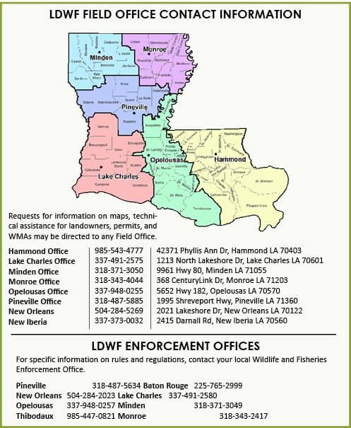 General Hunting Information Louisiana Hunting Seasons