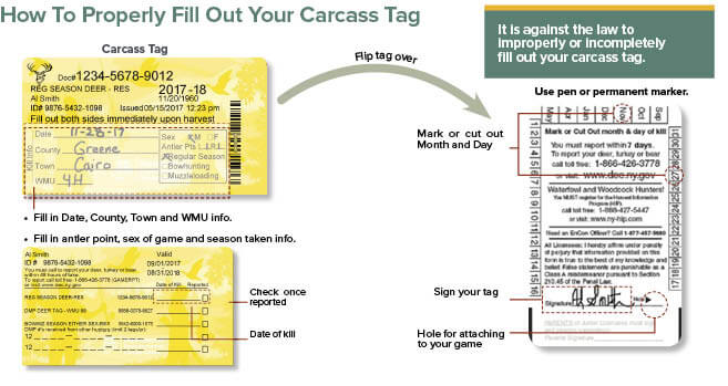 Find hunter safety card number florida for Buy colorado fishing license