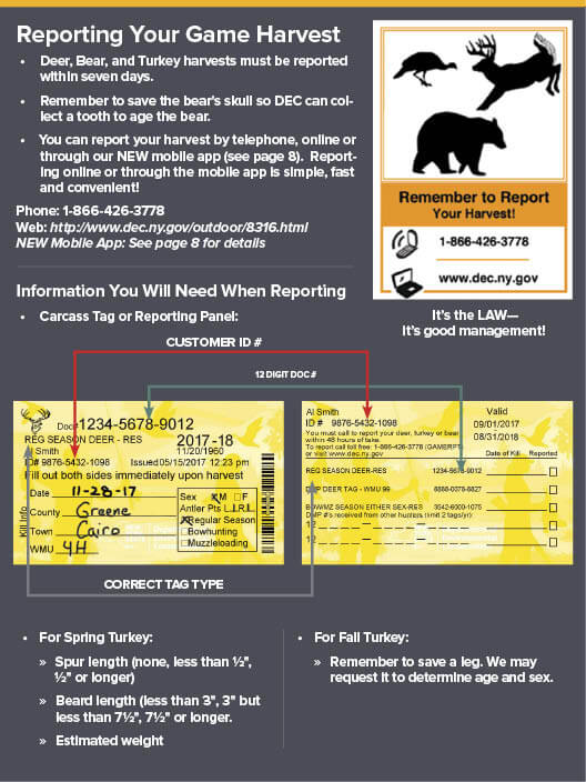 ny dec hunting licenses