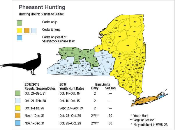 Small game hunting new york hunting seasons for Fishing regulations ny