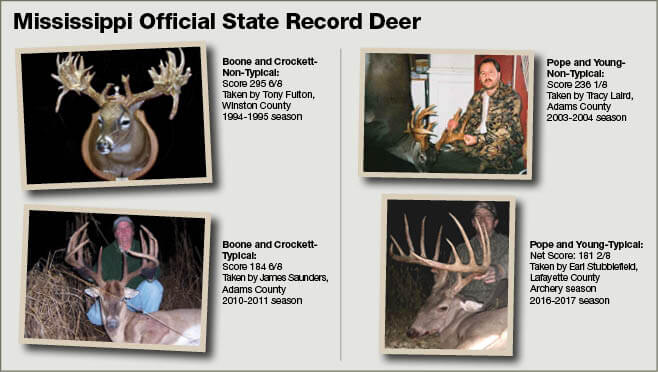 White tailed deer hunting mississippi hunting fishing for Oklahoma fishing license cost 2017