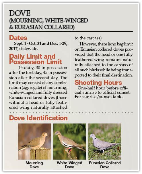 Migratory game bird regulations oklahoma hunting seasons for Oklahoma fishing license online
