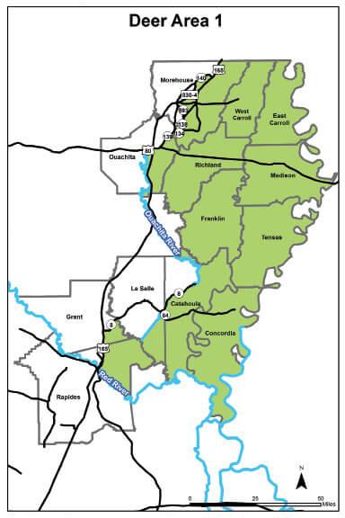 Deer Hunting Area 1 Louisiana Hunting Seasons Regulations