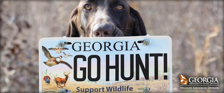 Welcome to the Georgia Hunting Regulations