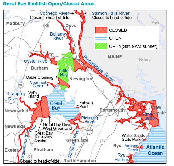 Shellfish areas new hampshire saltwater fishing for Nh fishing license