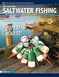 New hampshire saltwater fishing regulations seasons for Saltwater fishing license