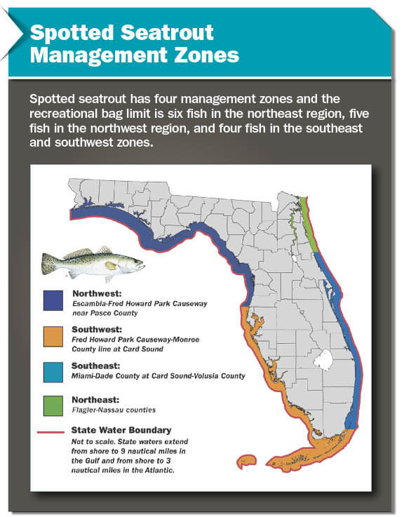 Management zones florida saltwater fishing regulations for Florida state fishing license