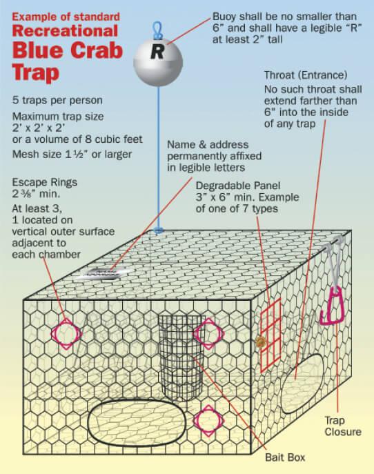 Understanding recreational saltwater traps florida for Florida saltwater fishing seasons