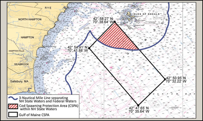 Cod spawning protection area new hampshire saltwater for Maine fishing laws