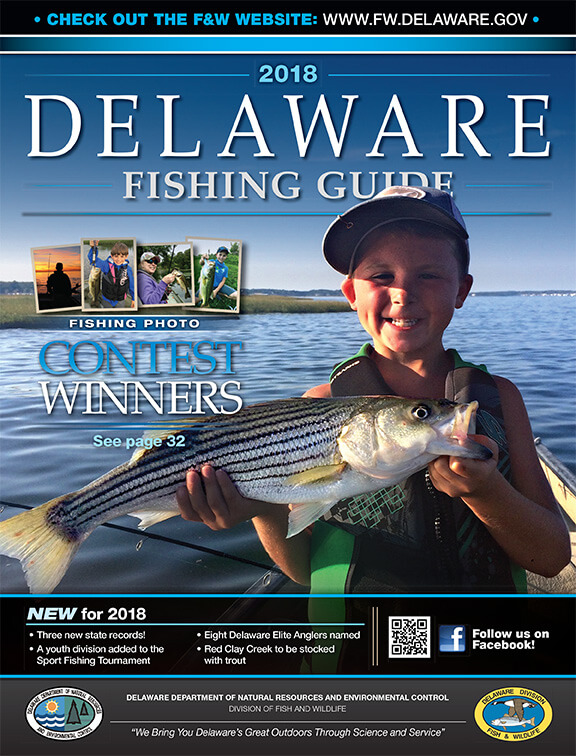 Delaware fishing regulations 2018 eregulations for Ct saltwater fishing license
