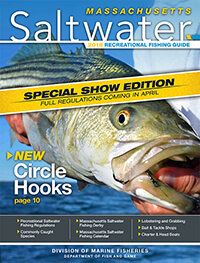 Massachusetts saltwater fishing regulations 2018 for Ma saltwater fishing license