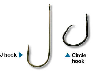 Best hook sites