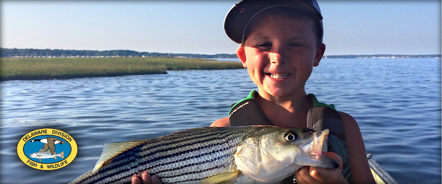 Welcome to the Delaware Fishing Guide