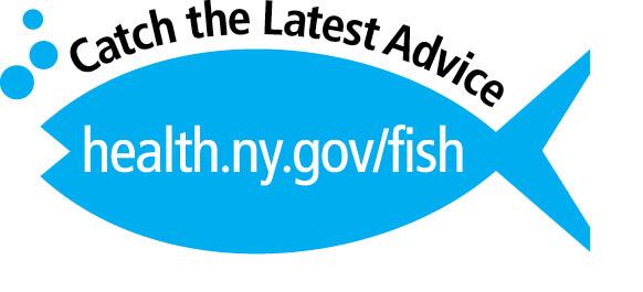 Health advisories new york fishing regulations guide for Ny fishing regulations