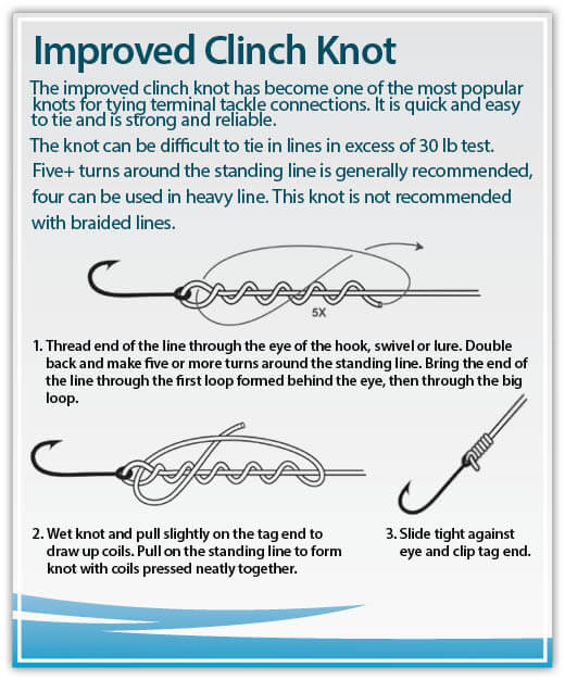 Fishing knots rhode island saltwater fishing regulations for Vt fishing license