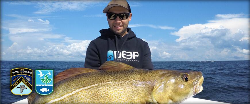 Rhode island saltwater fishing regulations guide 2018 for Virginia saltwater fishing regulations