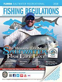 Florida saltwater fishing regulations 2018 eregulations for Fl fishing regulations