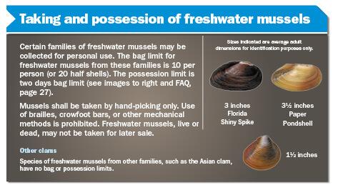 methods of taking fish florida freshwater fishing regulations