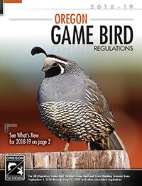 Buck Deer Seasons | Oregon Hunting Seasons & Regulations ...