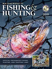 Massachusetts Saltwater Fishing Regulations – 2019