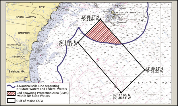 Cod Spawning Protection Area New Hampshire Saltwater Fishing