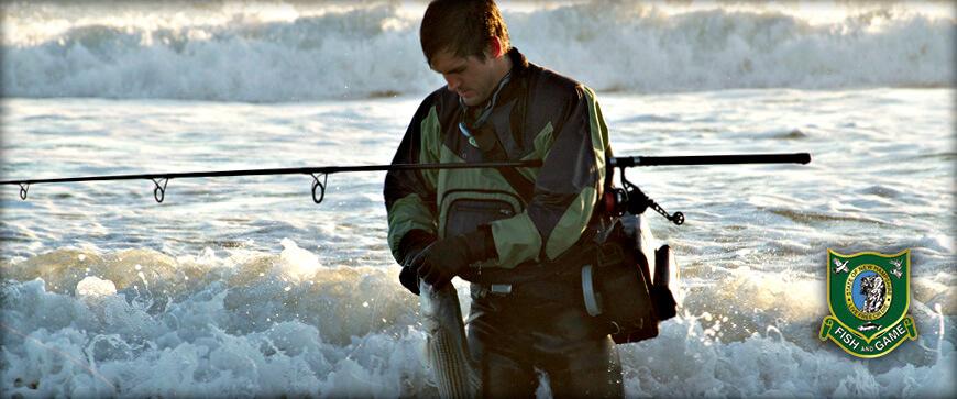 new hampshire saltwater fishing regulations & seasons – 2019
