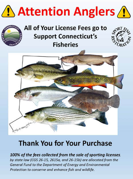 Rivers & Streams | Connecticut Fishing Regulations – 2019