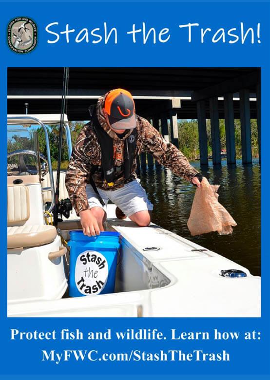 Spearing   Florida Saltwater Fishing Regulations – 2019