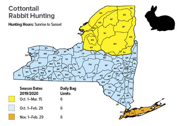 Small Game Season Dates & Bag Limits | New York Hunting Seasons ...