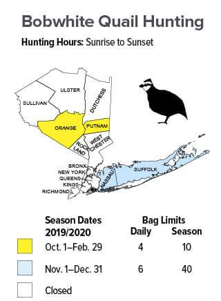 Small Season Dates Bag Limits