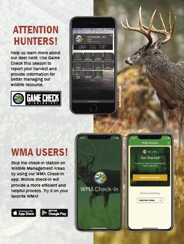 Check In Deer