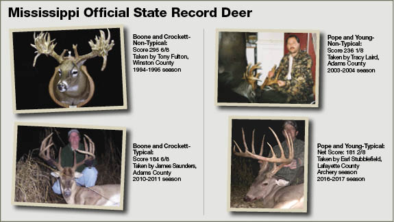 White-Tailed Deer Hunting | Mississippi Hunting & Fishing