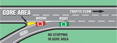 General Guidelines | Georgia Drivers Manual – 2019