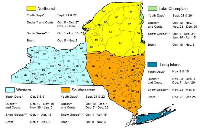 Migratory Game Bird Hunting Seasons & Bag Limits | New York Hunting ...