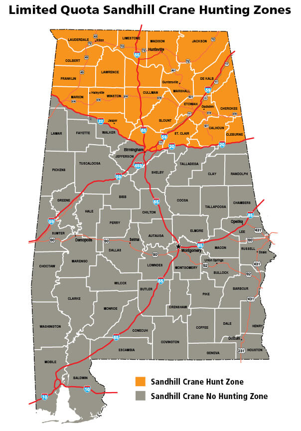 A New Hunting Opportunity in Alabama | Alabama Hunting
