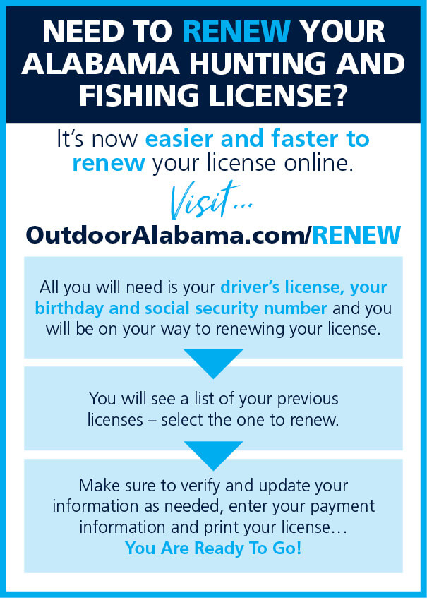 Alabama Out Of State Saltwater Fishing License
